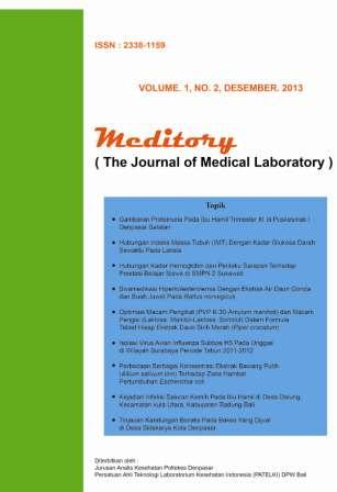 meditory journal (Vol. 1, No. 2, Desember 2013).jpg